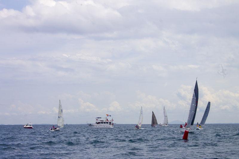 Start sailing!