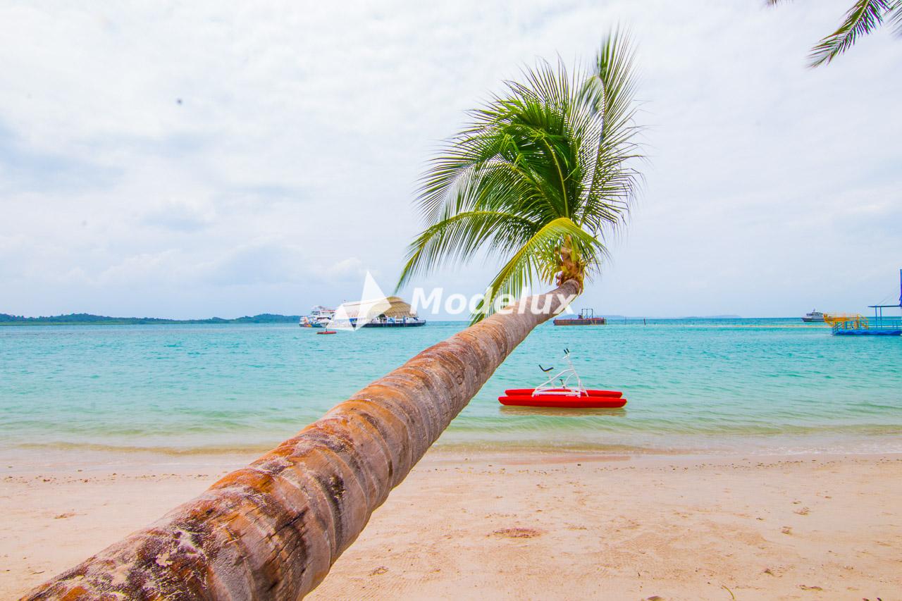 Pantai Kepri Coral